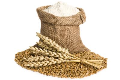 Komo Fidibus Medium grain mill flour