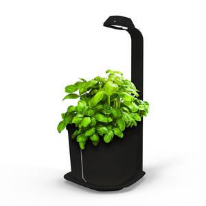 Tregren Genie hydroponic indoor garden black