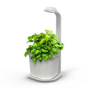 Tregren Genie hydroponic indoor garden white
